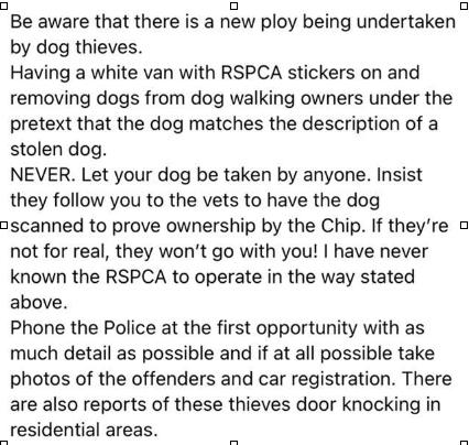 Dog Warning